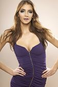 Portrait of sexy and attractive brunette young adult woman posing in violet dress.