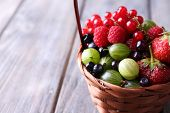 Forest berries in wicker basket, on wooden background