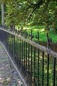 Long rusted wrought iron fence