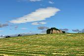 stock photo of plateau  - Provence landscape - JPG