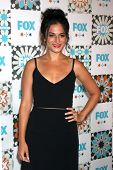 LOS ANGELES - JUL 20:  Jenny Slate at the FOX TCA July 2014 Party at the Soho House on July 20, 2014