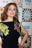 LOS ANGELES - JUL 20:  Emily Deschanel at the FOX TCA July 2014 Party at the Soho House on July 20,