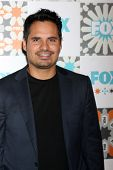 LOS ANGELES - JUL 20:  Michael Pena at the FOX TCA July 2014 Party at the Soho House on July 20, 201