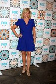 LOS ANGELES - JUL 20:  Mary Murphy at the FOX TCA July 2014 Party at the Soho House on July 20, 2014 in West Hollywood, CA