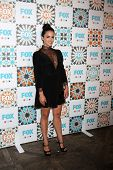 LOS ANGELES - JUL 20:  Melissa Fumero at the FOX TCA July 2014 Party at the Soho House on July 20, 2014 in West Hollywood, CA