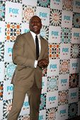 LOS ANGELES - JUL 20:  Terry Crews at the FOX TCA July 2014 Party at the Soho House on July 20, 2014