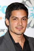 LOS ANGELES - JUL 20:  Nicholas Gonzalez at the FOX TCA July 2014 Party at the Soho House on July 20