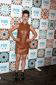 LOS ANGELES - JUL 20:  Aya Cash at the FOX TCA July 2014 Party at the Soho House on July 20, 2014 in