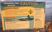Sign cautions swimmers about sharks at Newcomb's Hollow beach in Wellfleet, Massachusetts.