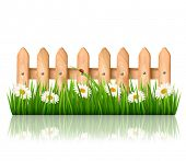 Background with a wooden fence with grass, flowers and butterflies