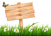 Nature background with green grass and flowers and wooden sign