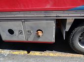 picture of peeking  - A dog peeks out of the hole in the door of a moving truck - JPG