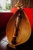 Sasando music instrument