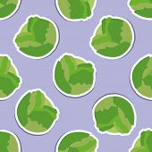 Cabbage Pattern. Seamless Texture