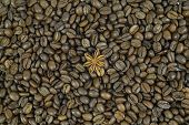 Lots Of Coffee Beans. One Anise Stars. Pattern. Background.