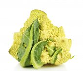 picture of romanesco  - Romanesco broccoli isolated on white - JPG