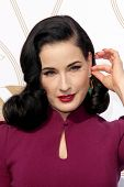 LOS ANGELES - JAN 9:  Dita Von Teese at the LoveGold Event at the Selma House on January 9, 2014 in Los Angeles, CA