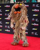 LOS ANGELES - MAR 11:  Sweetums at the