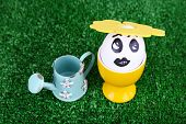 Egg in egg cup with watering can on green background