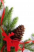 Background With Fir And Cone