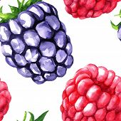 vector seamless pattern with berries