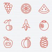 Fruit icons, thin line style, flat design