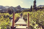Hike in Glacier National Park, Montana