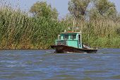 foto of pimp  - Old boat floating on thebayou overgrown with reeds - JPG