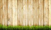 picture of wooden fence  - Background of wooden fence and green grass - JPG