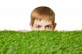 stock photo of peep  - Portrait of a boy peeping out through fresh spring green grass close up - JPG