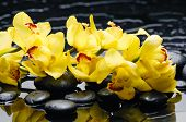 stock photo of yellow orchid  - Set of branch yellow orchid with therapy stones  - JPG