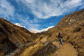 foto of sanskrit  - Trekking to Annapurna Base Camp in the Nepal Himalaya - JPG