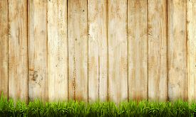 foto of wooden fence  - Background of wooden fence and green grass - JPG
