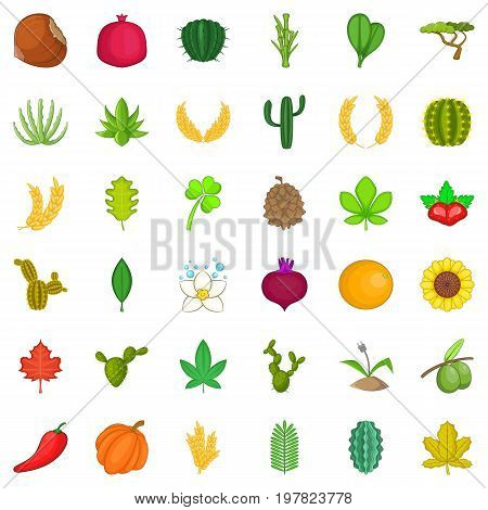 poster of Botany icons set. Cartoon style of 36 botany vector icons for web isolated on white background