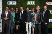 LOS ANGELES - 28 de julho: CSI: NY convertido (L-R) Buckley, Harper, Sela Ward, Gary Sinise, Giovinazzo, Belkn