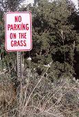 No Grass Parking