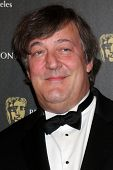 LOS ANGELES - NOV 4:  Stephen Fry arrives at the 19th Annual BAFTA Los Angeles Britannia Awards at H