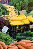 picture of farmers market vegetables  - Fresh summer organic vegetables at the Port Townsend Farmers market - JPG