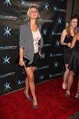 LOS ANGELES - DEC 14:  Natasha Lloyd attends the