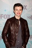 LOS ANGELES - JAN 11:  Chris COlfer arrives at the FOX TCA Winter 2011 Party at Villa Sorriso on January 11, 2011 in Pasadena, CA
