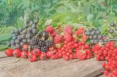 Berries On A Table Among Green Leaves poster