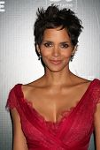 LOS ANGELES - FEB 22:  Halle Berry arrives at the 13th Annual Costume Designers Guild Awards at Beve