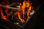 Red Flame From A Cut Of A Tree, Dark Gray Coals Inside A Metal Brazier. Firewood Burning In A Brazie poster