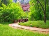 Bridge, Park Path And Mountain
