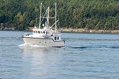 Trawler yacht sailing in the Northwest