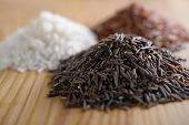 Three variety of rice: wild rice, red rice, and white rice. Shallow DOF