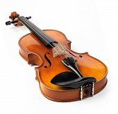 Violine, isolated on white