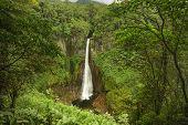 Catarata Del Toro-costa Rica