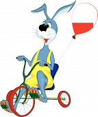 Cheerful gray hare rides a bicycle with three wheels