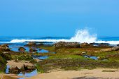Natural Tide Pools Along Pacific Ocean Coastline ~ Image Made During Low Tide
